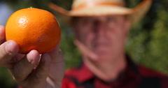 Mediterranean Farm Gardener Man Present Extreme Closeup Image Best Vegan Diet - stock footage