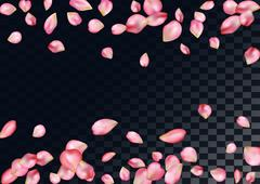 Abstract background with flying pink rose petals. - stock illustration