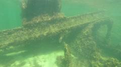 Snorkeling near ship wreck on Rottnest Island Stock Footage