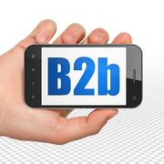 Finance concept: Hand Holding Smartphone with B2b on display Stock Illustration