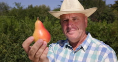 Happy Farmer Man Recommend Best Vitamins Fruit Dessert Fresh Sweet Ripe Red Pear Stock Footage