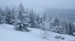 Snowfall in Winter Mountain. - stock footage