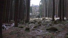 4k Feuersteinklippen rocks mountain range Harz winter tilt Stock Footage