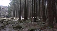 4k Feuersteinklippen rocks mountain range Harz winter pan Stock Footage