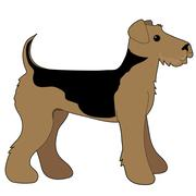 Airedale Terrier Stock Illustration