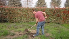 Young bearded man digging a hole in the garden Stock Footage