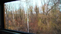 View of the Forest From a Moving Train Window - stock footage