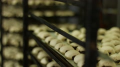 Production of sweet buns at the factory. Stock Footage