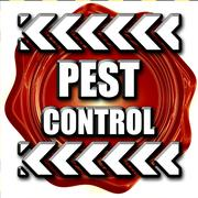 Pest control background - stock illustration