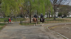 Policemen's riding horses in Washington DC - stock footage