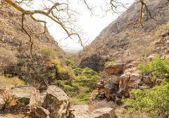 Moremi Gorge Botswana - stock photo