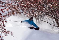 Cross country skier on snowy terrain - stock photo