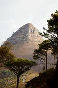 Lion's Head mountain viewed from Signal Hill, Cape Town South Africa, Kuvituskuvat