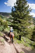 Woman horse riding through Beaver Creek, Colorado, USA Kuvituskuvat
