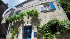 Stone House with Blue Shutters and Vines - stock footage