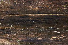 Moss and mold affect a wooden planks. - stock photo