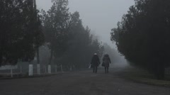 Stock Video Footage of Women Walk Down Alley With Trees on Each Side Which is Covered With Dense Fog