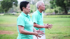 Video of Asian Senior Elderly couple Practice Taichi, Qi Gong exercise outdoor Stock Footage