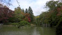 Pond in the Bulguksa Temple. Gyeongju, South Korea. Stock Footage