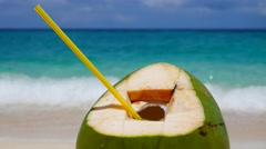 Coconut on a sand UHD - stock footage
