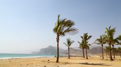 Near sandy beach sky palm and mountain in oman arabic sea the hill. Stock Footage
