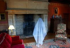 Ghost floating in ornate living room Kuvituskuvat