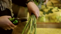 Female hands is cutting flower stems with scissors. - stock footage