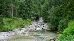 Beautiful small waterfall in the forest, Ausrian Alps - stock footage