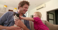 Modern Dad Holding Cat for Son to Pet on Couch - stock footage