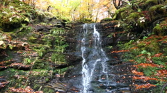 Waterfall at Birks of Aberfeldy, Aberfeldy, Scotland Stock Footage