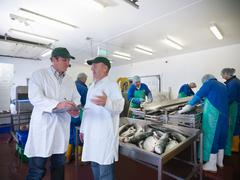 Manager and staff discuss production line of hand-reared Scottish salmon farm Stock Photos