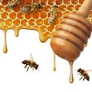 flow of sweet honey on the white background - stock photo