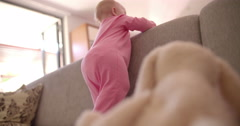 Baby Girl Standing on Couch, Pressed on Back Pillows - stock footage