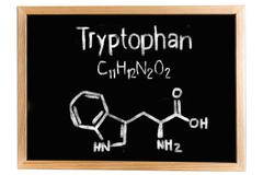 Blackboard with the chemical formula of Tryptophan Stock Illustration