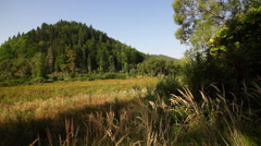 Panoramic view in Transylvania Stock Footage