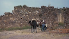 Hispanic Cowboy with horses Stock Footage
