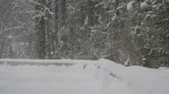 Snowfall near a forest in Hallstatt Stock Footage