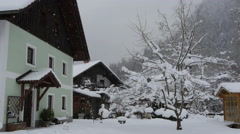 Stock Video Footage of Green house and a tree on a winter day in Hallstatt