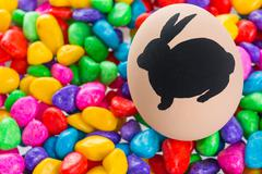 Easter bunny painted on egg Stock Photos
