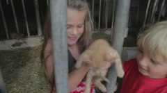 Children Playing With Kittens On Farm Stock Footage