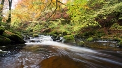 Time lapse of Moness Burn in Aberfeldy Stock Footage