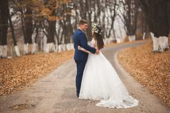 Happy wedding couple, bride and groom walking in the autumn forest, park - stock photo