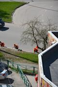 Municipal road gang is painting white border stone. Stock Photos
