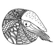 Hand drawn Nautilus in zentangle style - stock illustration