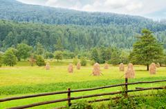 Haystacks in the mountain valley of the Carpathian Mountains Stock Photos