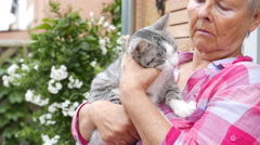 Happy grey cat being stroked by her owner Stock Footage