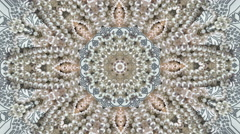 Abstract background real pearl jewelry mix Stock Footage