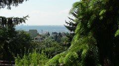 View of the town from crown coniferous trees Stock Footage