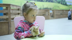 Kids and animals - Little girl holding a fluffy rabbit on hands Stock Footage