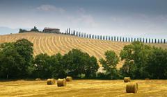 Hay bales in crop field Stock Photos